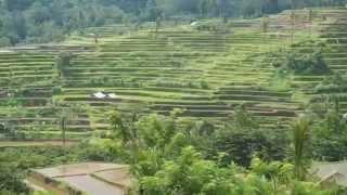 видео Острів Балі. Відпочинок на острові Балі. Новий рік на Балі » Жіночий світ