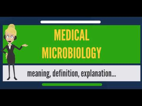 What is MEDICAL MICROBIOLOGY? What does MEDICAL MICROBIOLOGY mean?