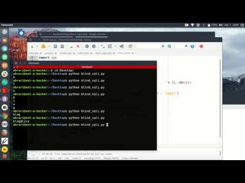 Tutorial 28: Web - Blind SQL injection