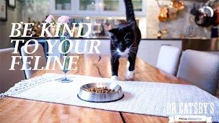 """食事中の""""ヒゲ倦怠感""""を軽減する、絶妙なカーブの猫食器"""