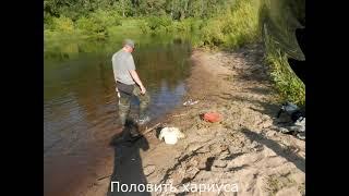 Рыбалка на реке Ижма Лето хариус язь Отличная погода