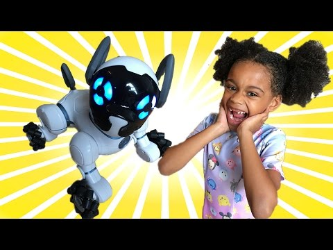 Magic Toy Surprise Puppy   Christmas Gift Joke with Chip the Robot Dog