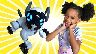 Magic Toy Surprise Puppy | Christmas Gift Prank with Chip the Robot Dog