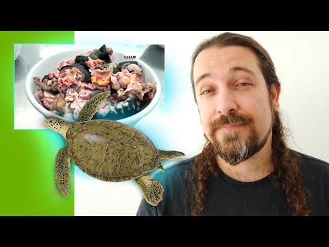 MC Lele JP e MC Neguinho do Kaxeta - Sou Vitorioso (DJ Pedro) from YouTube · Duration:  4 minutes 17 seconds