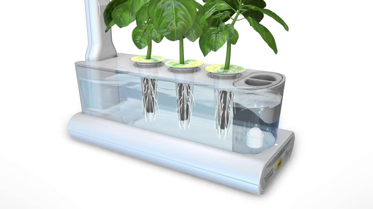 Ag3sl Hydroponics Animation Youtube