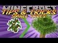 Minecraft Tips And Tricks - How to Grow Small Trees and Tree Farm