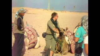 Camel ride Hurghada Egypt