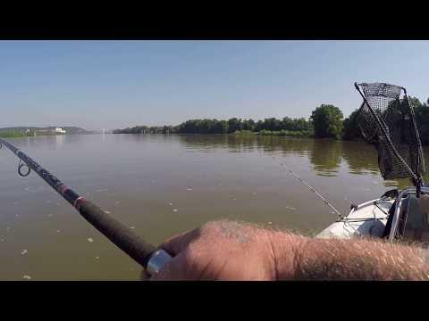 Ohio Rive Catfishing: Free Drifting for Blue Cats