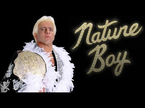 The VERY BEST of Ric Flair - The ULTIMATE Promos (HD)