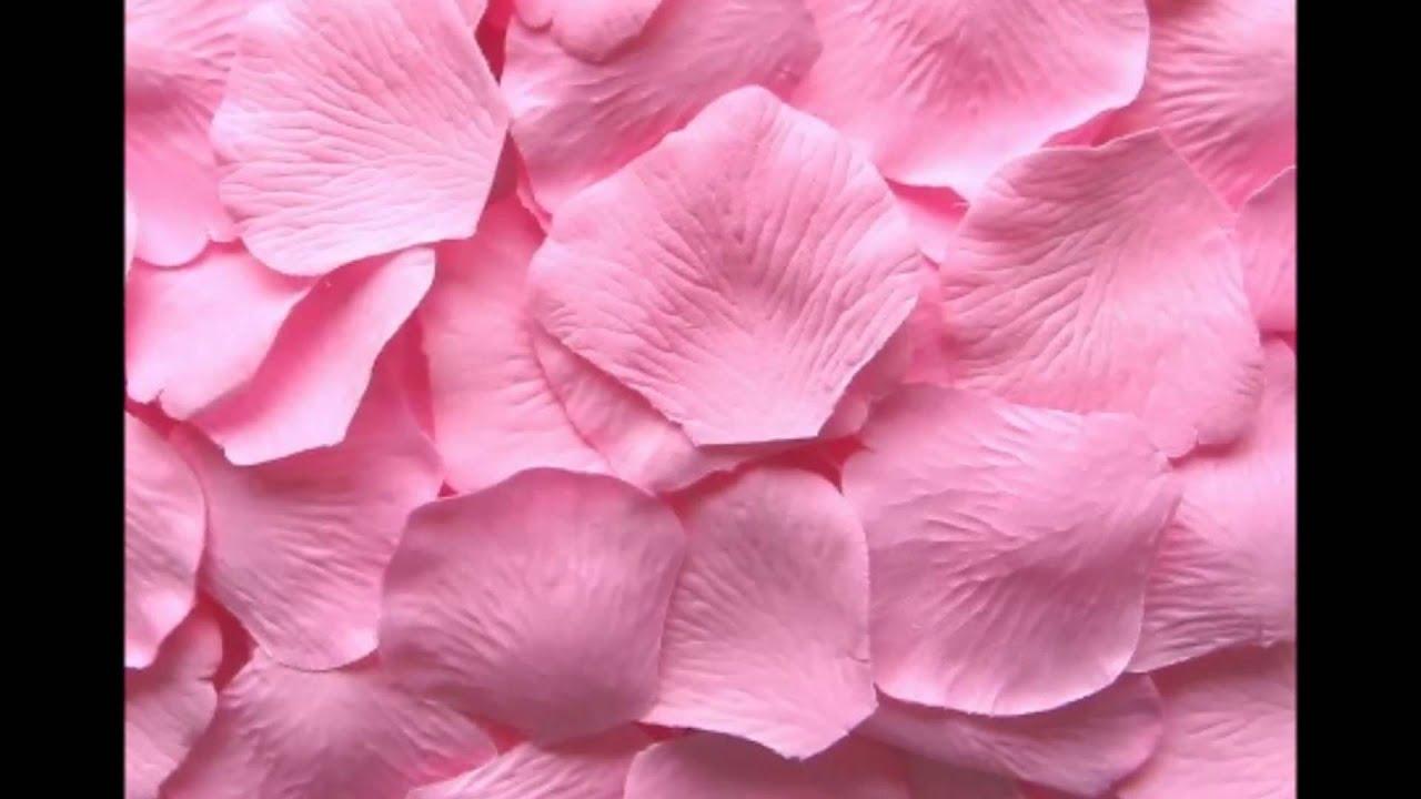 American Floral Network Pink Wedding Silk Rose Petals Usa Youtube