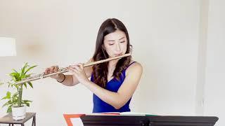 JS Bach Partita for Flute I. Allemande