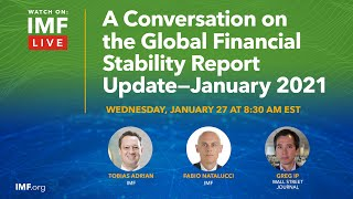 A Conversation on the Global Financial Stability Report Update – January 2021
