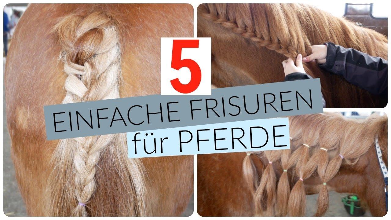 5 Einfache Pferde Frisuren Zum Nachmachen Youtube