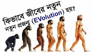 কিভাবে বিভিন্ন প্রজন্মের সৃষ্টি হয়? | What is Darwin's Theory of Evolution? | IT EXPERT