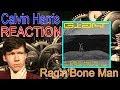 Calvin Harris, Rag'n'Bone Man - Giant REACTION