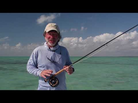 Salt Water Fly Fishing In Shallow Waters