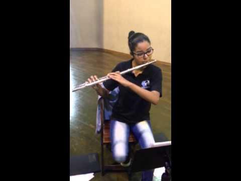 Orquestra Filarmônica Jovem Da Assatemec - Música Arioso