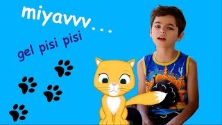 Miyav Çocuk Şarkısı - Onur Erol & Pinhan Erol