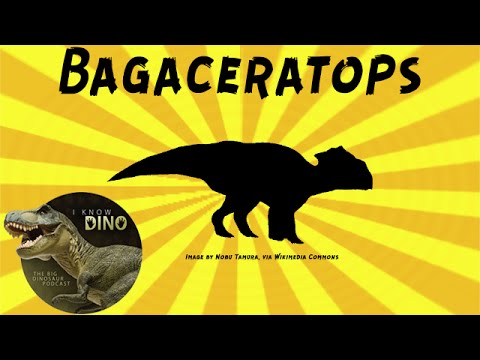 Bagaceratops: Dinosaur of the Day