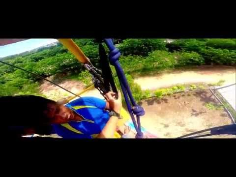 Flying with the fox | Haniff