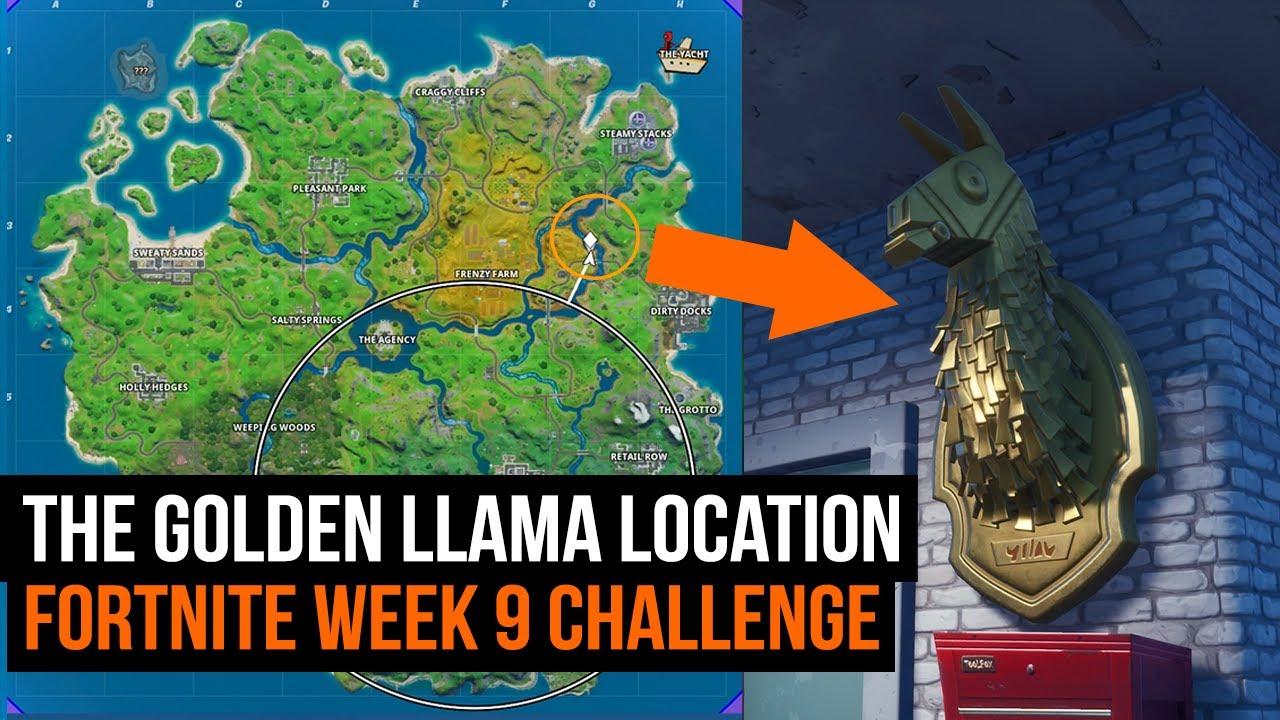 How To Get Llama Head Fortnite Where To Find The Golden Llama Fortnite Season 2 Week 9 Youtube