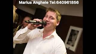 Marius Anghele 2019 O prins doru radacina