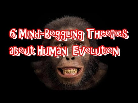6 Mind-Boggling Theories About Human Evolution (Cultural/Physical)