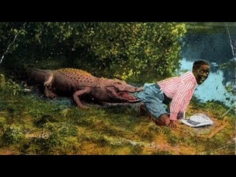 робинзон и пятница собирают кокосы и ловят крокодилов