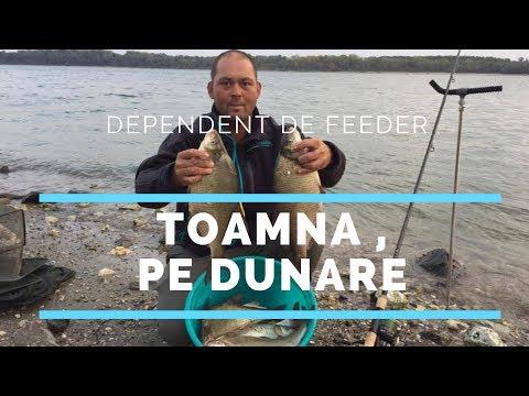Pescuit la Dunare cu feeder toamna