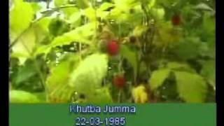 Khutba Jumma:22-03-1985:Delivered by Hadhrat Mirza Tahir Ahmad (R.H) Part 5/6