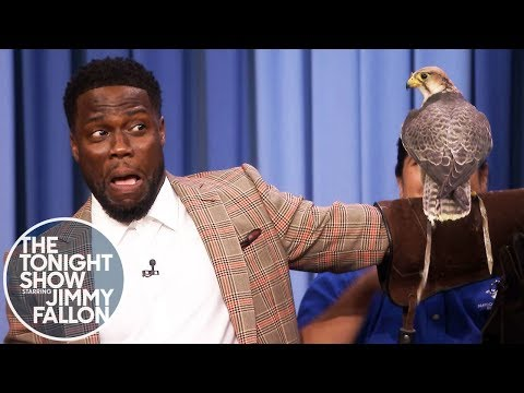 Смотреть Kevin Hart Is Terrified of Robert Irwin's Animals онлайн
