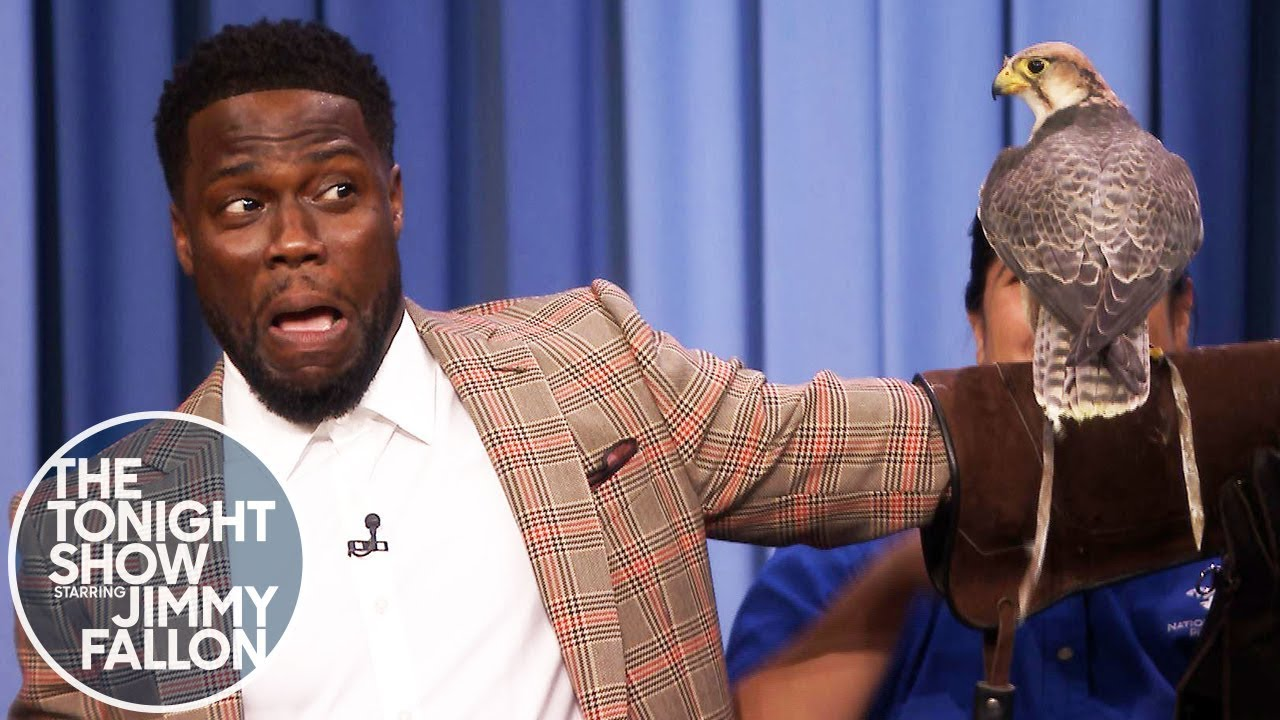 Watch Kevin Hart Is Terrified of these Animals