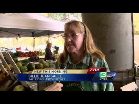 New law aims to cut down on farmer's market fraud