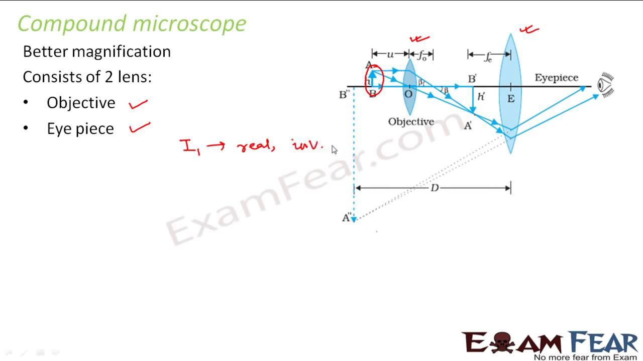 Physics ray optics part 47 compound microscope cbse class 12 youtube physics ray optics part 47 compound microscope cbse class 12 ccuart Gallery