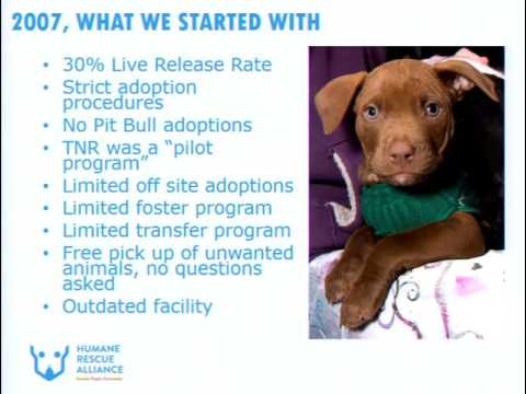 Lifesaving Programs for Shelters