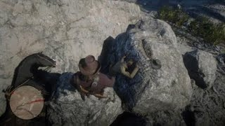 Red Dead Redemption 2 crazy horse