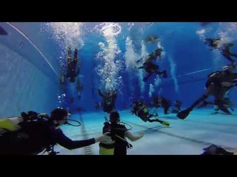 Try A Dive - National Aquatic Centre Dublin