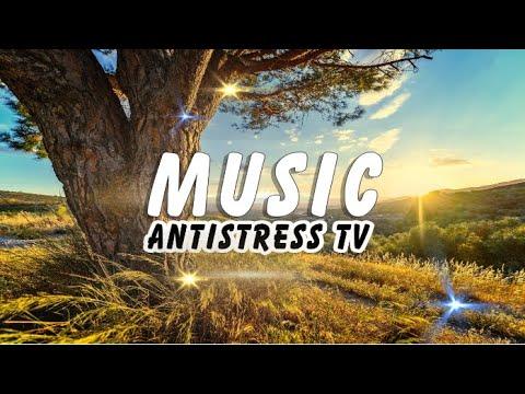 ♪ Это Лёгкая Музыка 2020 для Сказочного Настроения [Antistress TV Music] Relax Music