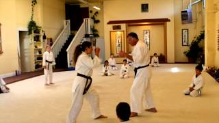 Tenzan Aikido Brown and Black Belt Children