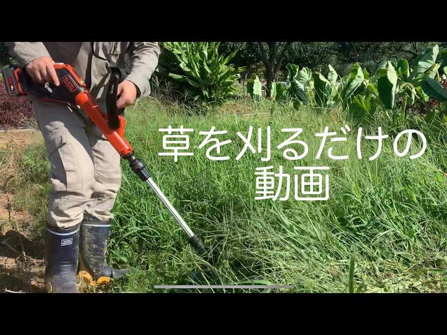 ただ草を刈るだけの動画