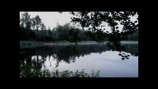 Nelione - Mardrömmar (Streetvideo)