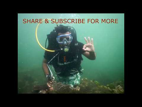 Deep Sea Diving in the Arabian Sea