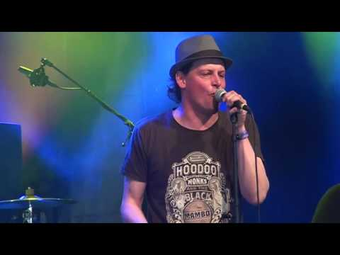 Mike's Electric Mud live at the Moulin Blues festival 2016