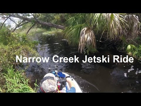 Jet ski ride in a narrow, twisty jungle creek in Florida