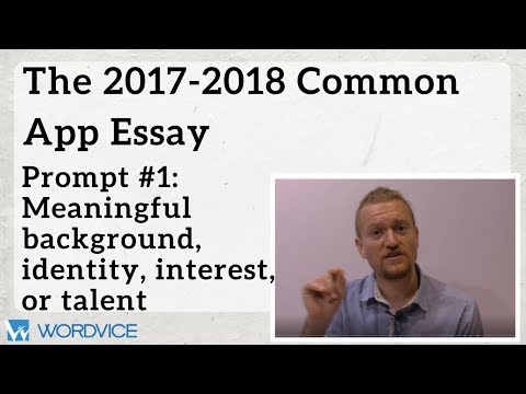 Writingthe 2017-2018 CommonApplicationEssay:Prompt#1