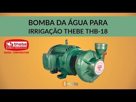 BOMBA DE ÁGUA CENTRÍFUGA PARA IRRIGAÇÃO THEBE THB-18 | Coliseu Ferramentas