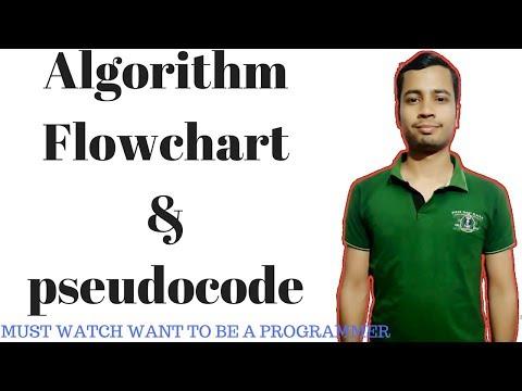 Programming basics :  Algorithm flowchart and pseudocode