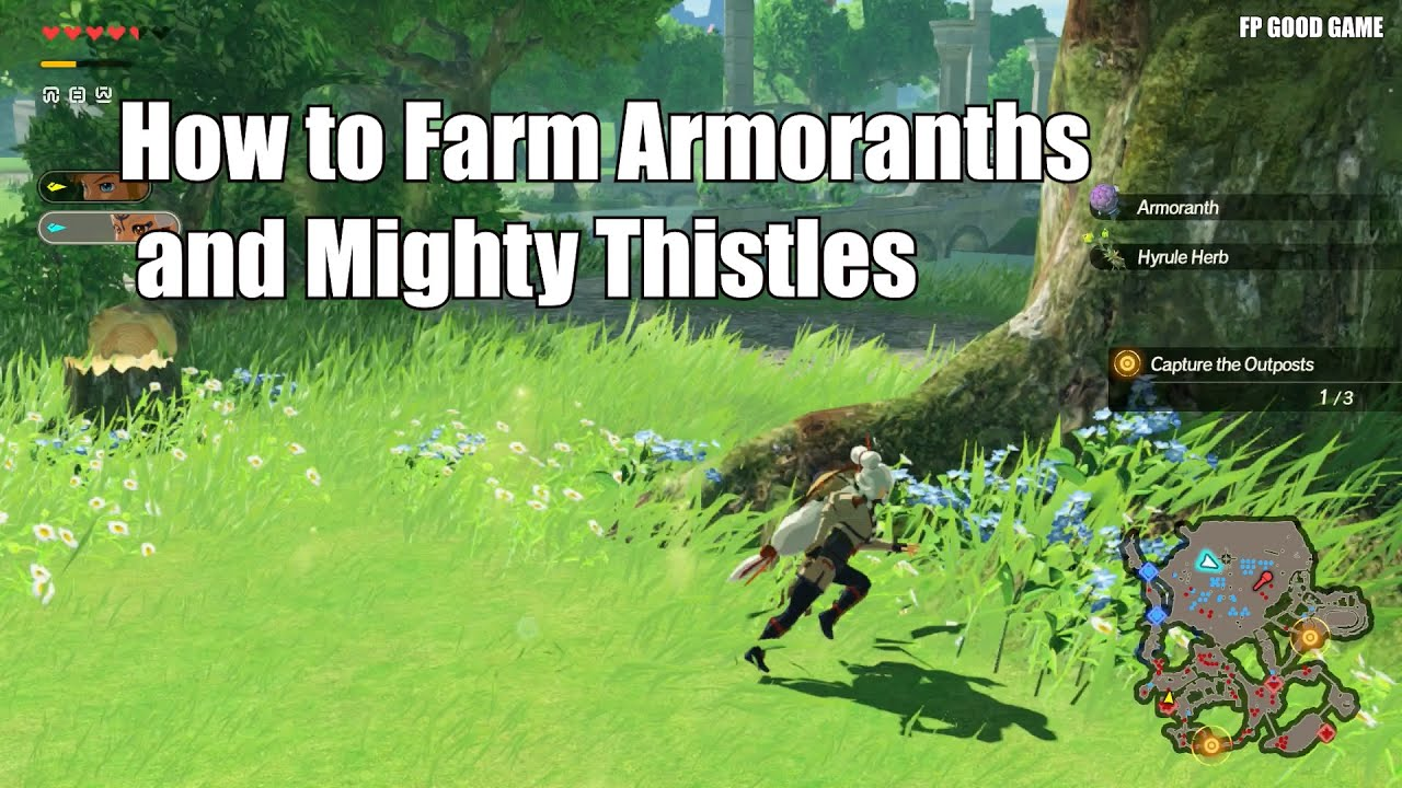 How To Farm Armoranths And Mighty Thistles In Hyrule Warriors Age Of Calamity Youtube