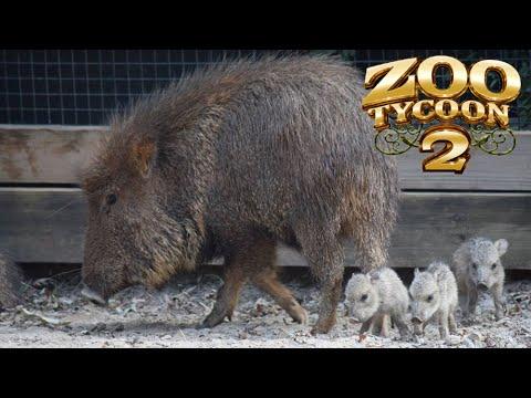 Zoo Tycoon 2: Chacoan Peccary Exhibit Speed Build