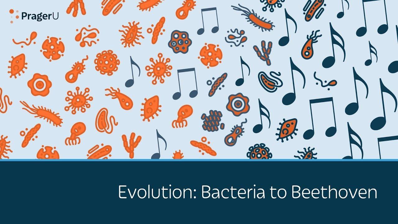 PragerU Evolution: Bacteria to Beethoven